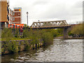 TQ7556 : River Medway, Rail Bridge at Maidstone by David Dixon
