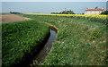 TL4493 : Drainage Ditch by Kim Fyson