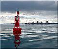 J4686 : Helen�s Bay Buoy, Belfast Lough : Week 22