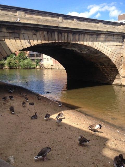 York 'beach'.  Under Ouse bridge