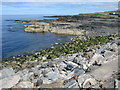 NJ7064 : Rocky coastline at Macduff by C Michael Hogan