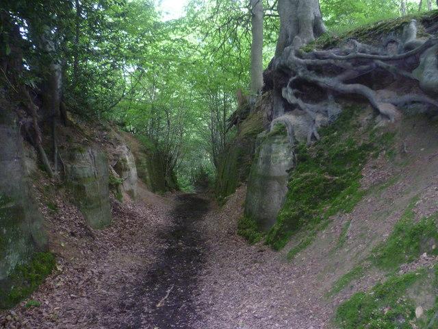 Sunken Lane On The Eden Valley Walk Marathon Cc By Sa 2