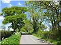 SJ4470 : Picton Lane, Mickle Trafford by Jeff Buck