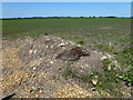 TL3881 : Track rubble on Old Halves - Between Chatteris and Somersham by Richard Humphrey