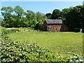SJ8058 : Disused barn at Forge Farm by Richard Law