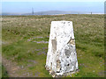 SD9913 : Moss Moor Trig Pillar, White Hill by David Dixon