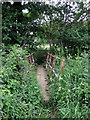 TL0132 : Footbridge on the path to Priestly Farm by Philip Jeffrey
