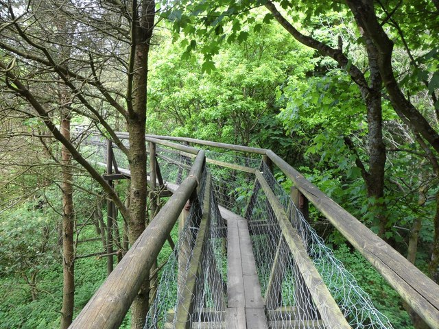 Treetop Walkway Palacerigg Country Park Stephen Sweeney