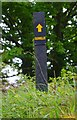 R6779 : Signpost at start of track, by junction with road to Ballylaghnan, Co. Clare by P L Chadwick