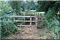 TL0937 : Footbridge over the Flit by Philip Jeffrey