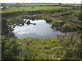 SX1787 : Quarry pool near Trelay by Rod Allday