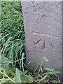 SE2130 : Ordnance Survey Cut Mark by Peter Wood