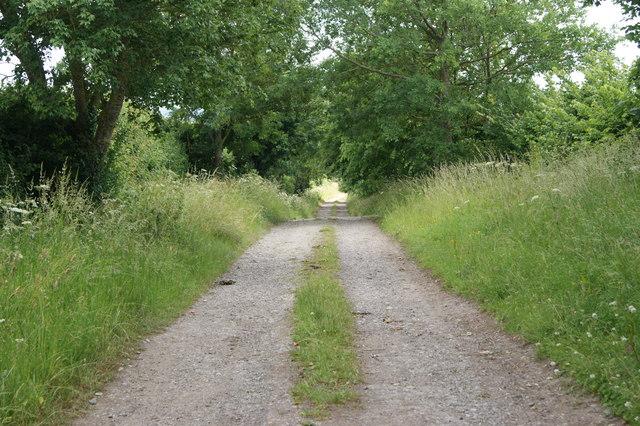 Ilchester Lane, Long Sutton