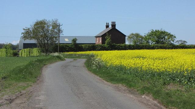 Smith's Lane and Smith Lane Farm