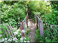SJ5972 : Cuddington Brook footbridge by John Topping