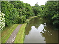 SJ8840 : Trent and Mersey Towpath by Peter Fleming