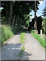 SE0935 : Footpath - Lane Side by Betty Longbottom