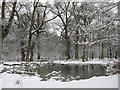 SP9713 : The Snow edge of Clickmere Pond, Ashridge (late February 2010) by Chris Reynolds