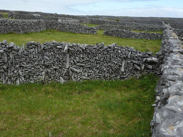 Fields on Inis Oírr