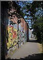 ST6071 : Graffiti by the River Avon Trail by Derek Harper