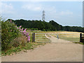 TQ0193 : Footpath towards Rickmansworth by Robin Webster