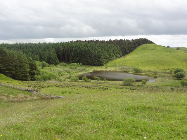 Reservoir on Nercwys Mountain