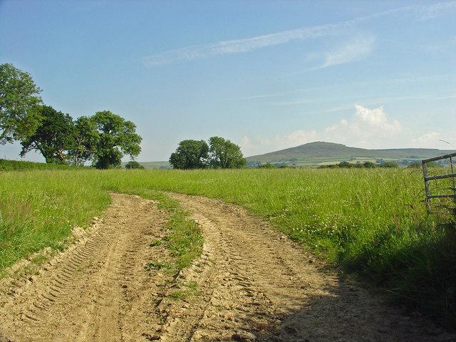 Field: Eglwyswen