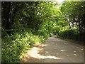 SX4163 : Road at North Wayton by Derek Harper