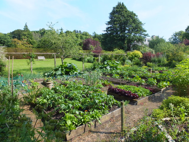 Vegetable garden, Malleny