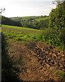 SX4065 : Field above the Hornifast valley by Derek Harper