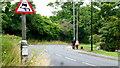 SP0276 : Dog-walking, Longbridge Lane by Jonathan Billinger