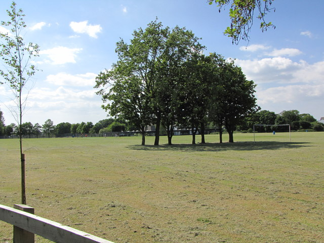 The Playing Fields