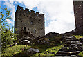 SH7252 : Dolwyddelan Castle (2) by Mike Searle