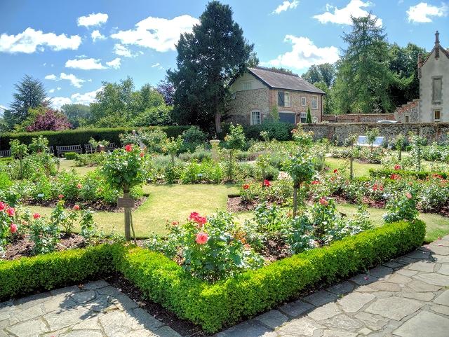 The Old English Rose Garden, Abbey Gardens