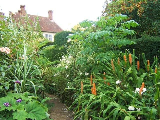 The tropical garden great dixter barbara carr for Garden trees england