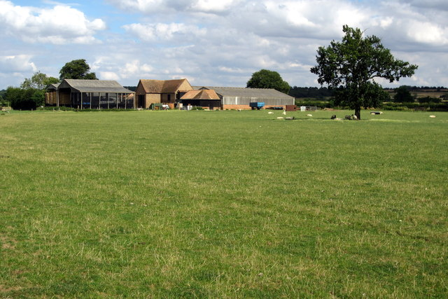 Manor Farm buildings and sheltering sheep
