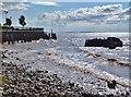 TA1128 : Humber Estuary : Week 33