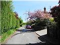 SJ9896 : Gallowsclough Road, Matley by John Topping