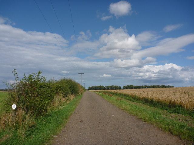 East Lothian Landscape : Field Track... © Richard West cc ...