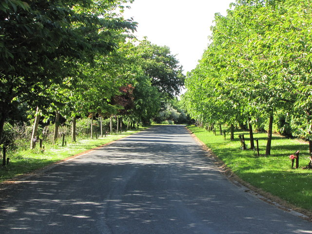 The Driveway of Preston Crematorium