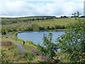 SO1811 : Machine Pond, Brynmawr by Robin Drayton
