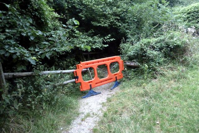 "Tyneham ""Woodland Walk"": closed"