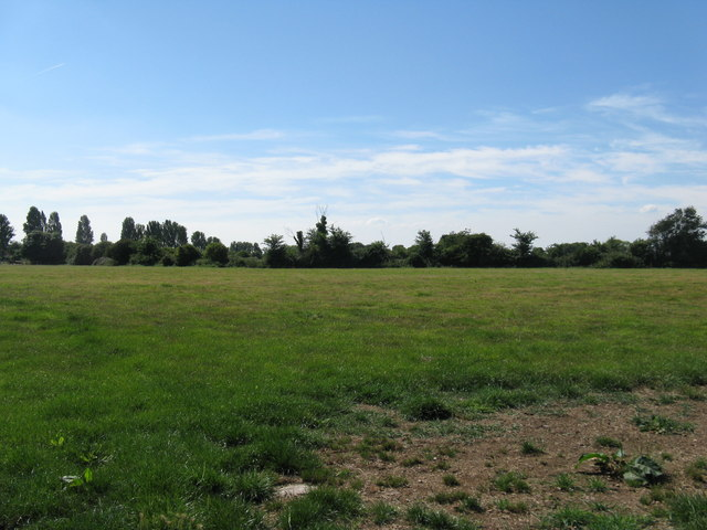 Field on the western side of B2166 Lower Bognor Road