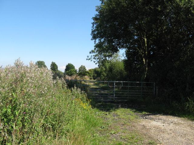 Footpath 130 to Copyhold Farm