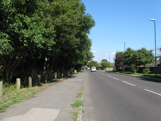 Nyetimber Lane alongside Avisford Park on the left