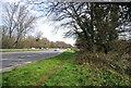 SU8447 : A31, Farnham bypass by N Chadwick