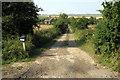 SP9846 : The lane to Gadfly Farm by Philip Jeffrey