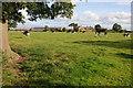 SJ6162 : Townfield Farm near Wettenhall by Philip Halling
