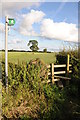 SJ6161 : Stile and footpath by Philip Halling