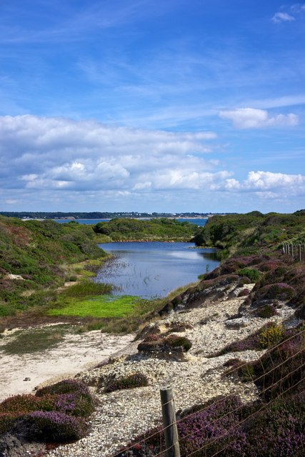 Quarry Pond, Hengistbury Head